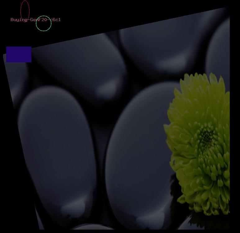 Buying GenF20